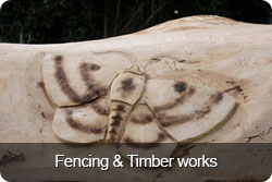 fencing-timber-works-button.jpg