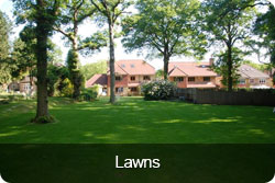 lawns-button.jpg