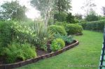 Mature architectural planting supplied and installed