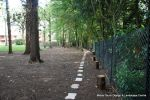AFTER: Stepping sandstone path installed with lighting and irrigation to create a pleasant walk within the grounds