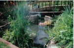 Curved timber Arbour built leading to Timber arch bridge over water feature